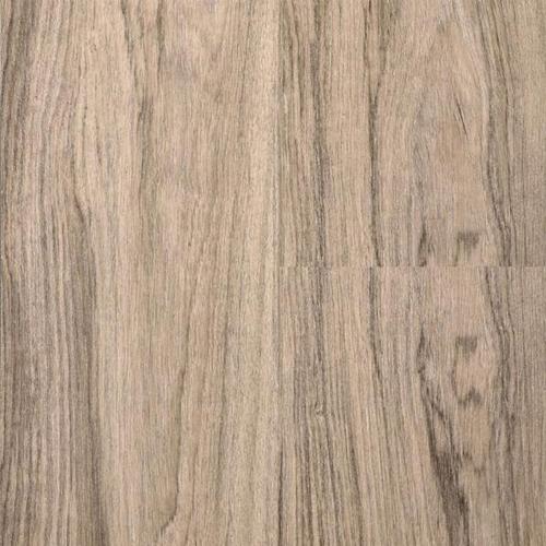 27FP Senegal Oak
