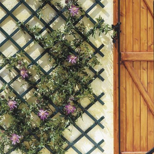 Πέργκολα τοίχου ανοιγόμενη